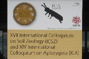 第17回国際土壌動物学会議第14回国際無翅昆虫学会議